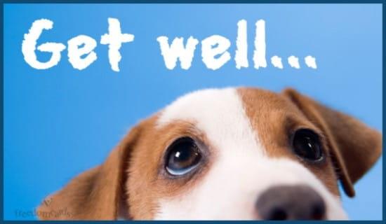 Get Well... ecard, online card