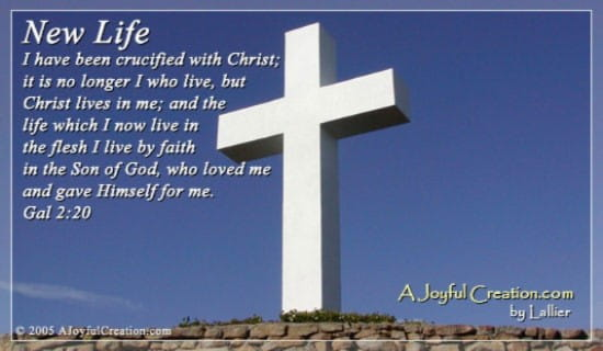 New Life ecard, online card