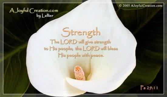 Strength ecard, online card
