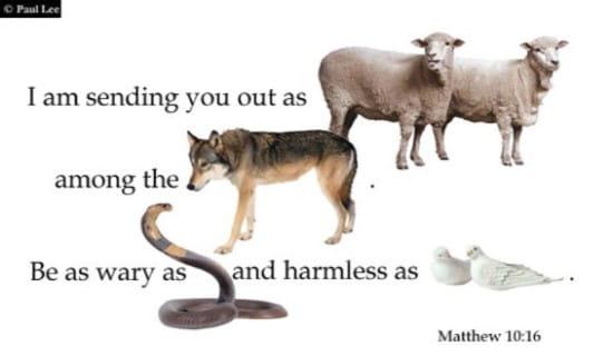 Matthew 10:16 ecard, online card