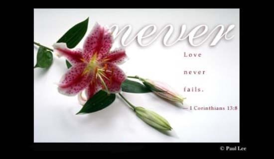 Love Never ecard, online card