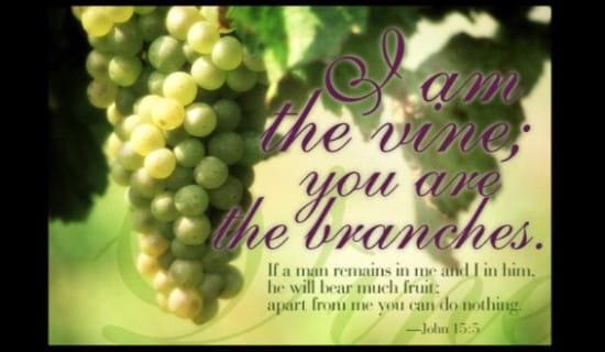 I am The Vine ecard, online card