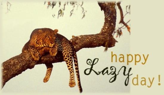 Lazy Day (8/10) ecard, online card