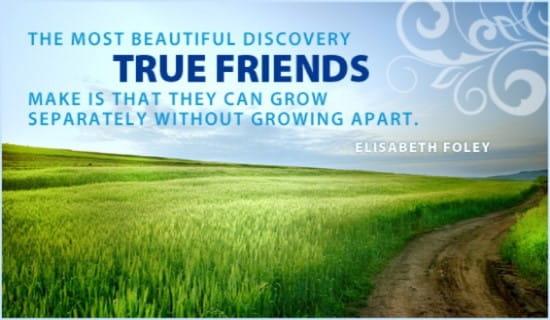Friendship Day (8/7) ecard, online card