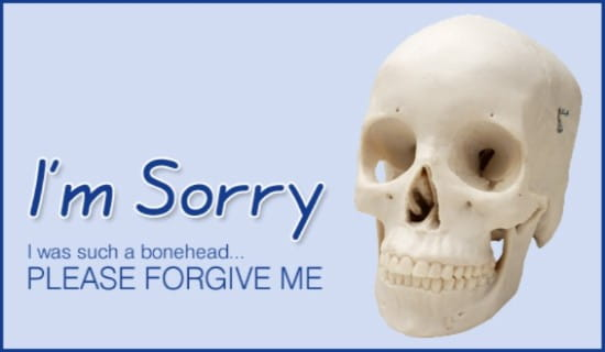 Free bonehead im sorry ecard email free personalized oops and free bonehead im sorry ecard email free personalized oops and sorry cards online thecheapjerseys Gallery