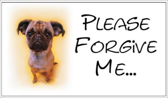 Please Forgive Me ecard, online card