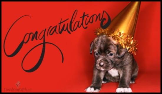 Congratulations, Puppy ecard, online card