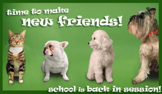 Time To Make New Friends! ecard, online card