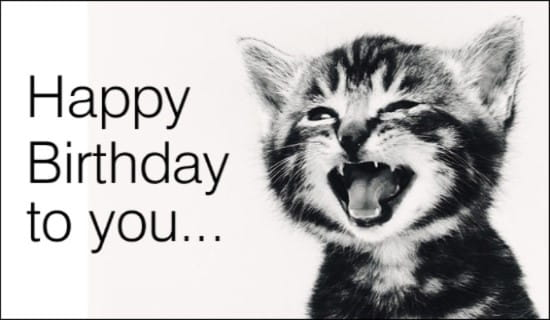 Singing Cat Home ECards Birthdays