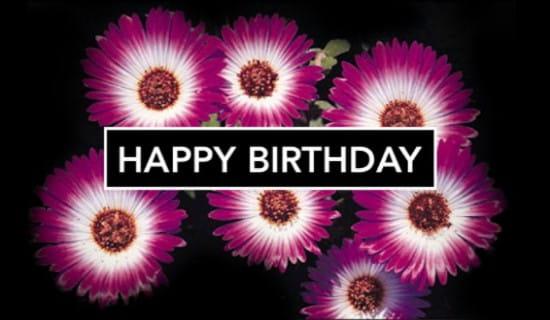 Pink Flowers ecard, online card