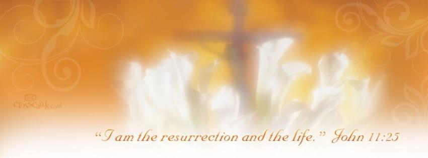 John 11:25 mobile phone wallpaper