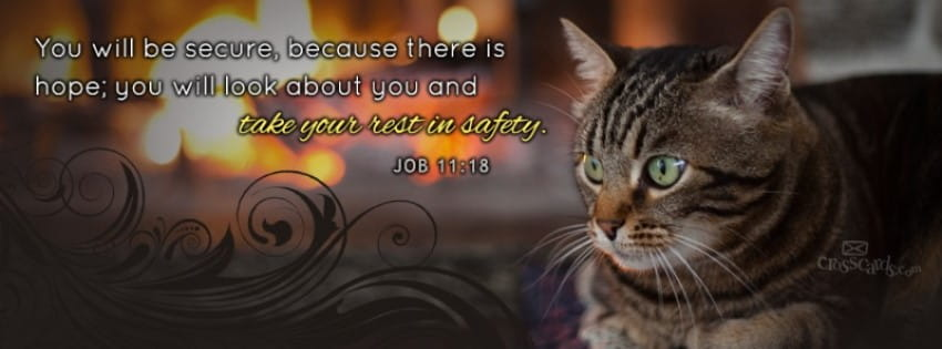 Rest in Safety - Job 11:18 mobile phone wallpaper