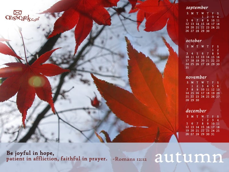 Autumn 2010 mobile phone wallpaper
