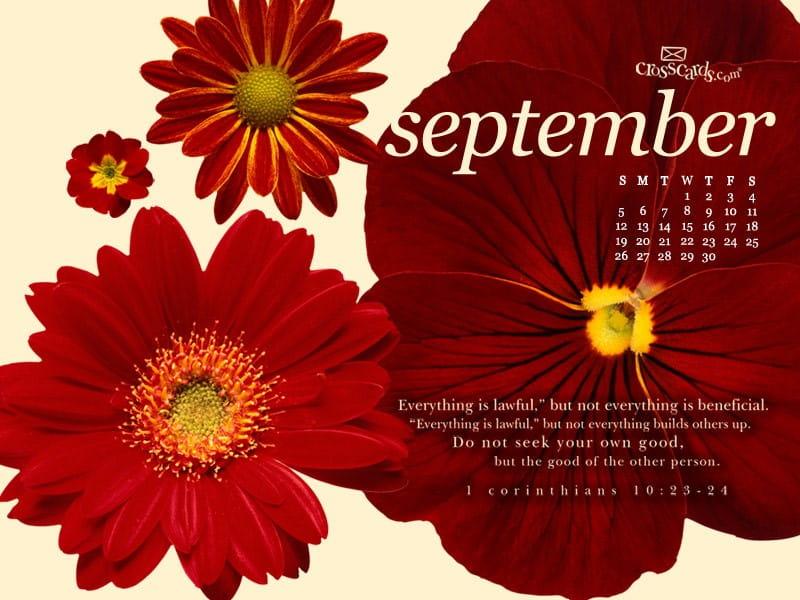 September 2010 - Lawful mobile phone wallpaper
