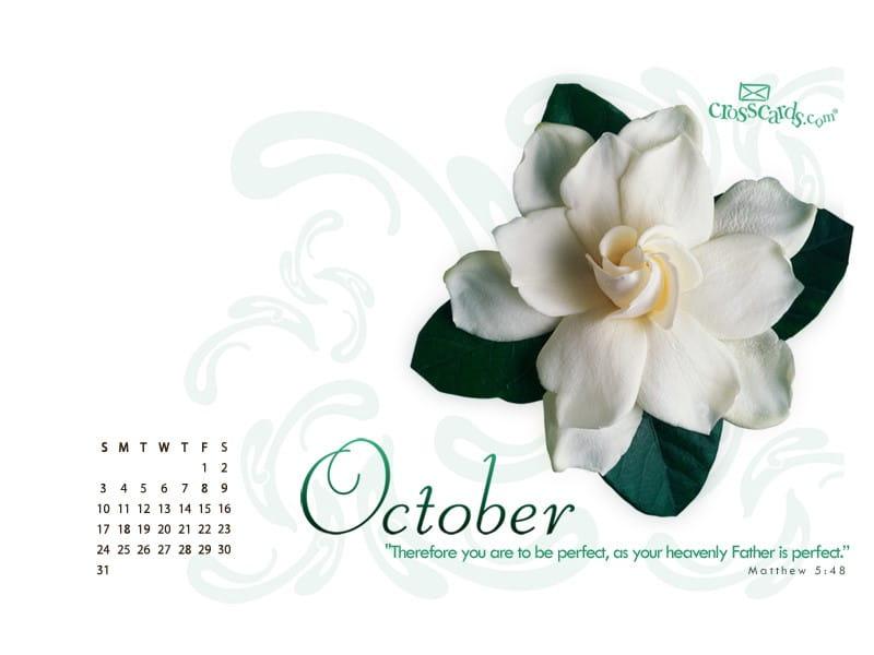 October 2010 - Matthew 5:8 mobile phone wallpaper