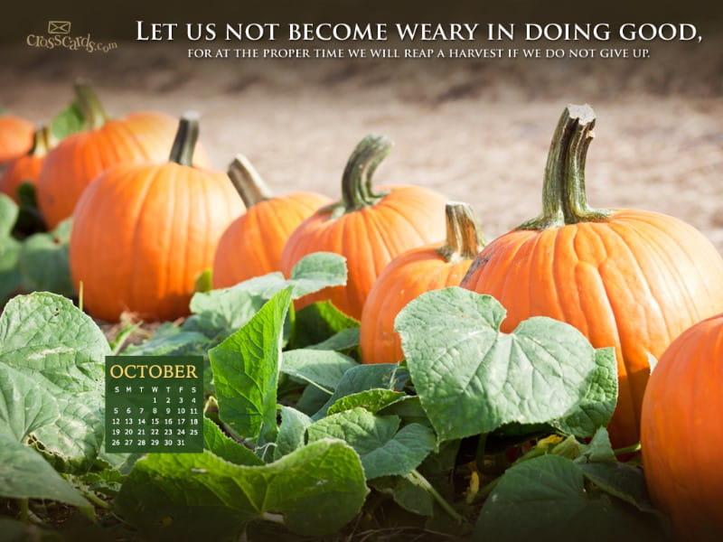 October 2014 - Doing Good  mobile phone wallpaper