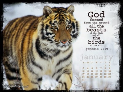 God Formed January 2010 mobile phone wallpaper