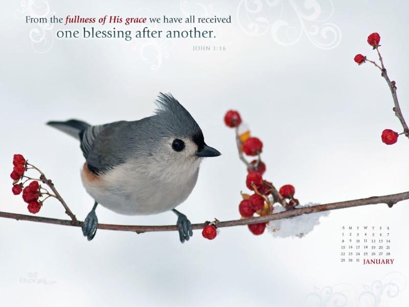 Jan 2012 - John 1:16 mobile phone wallpaper