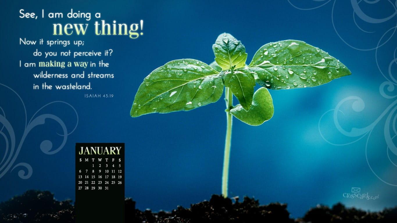 Jan 2013 - New Thing Desktop Calendar- Free January Wallpaper