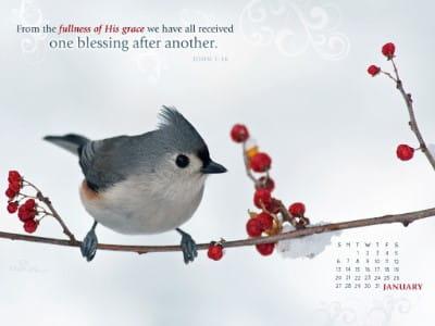 Jan 2013 - John 1:16 mobile phone wallpaper