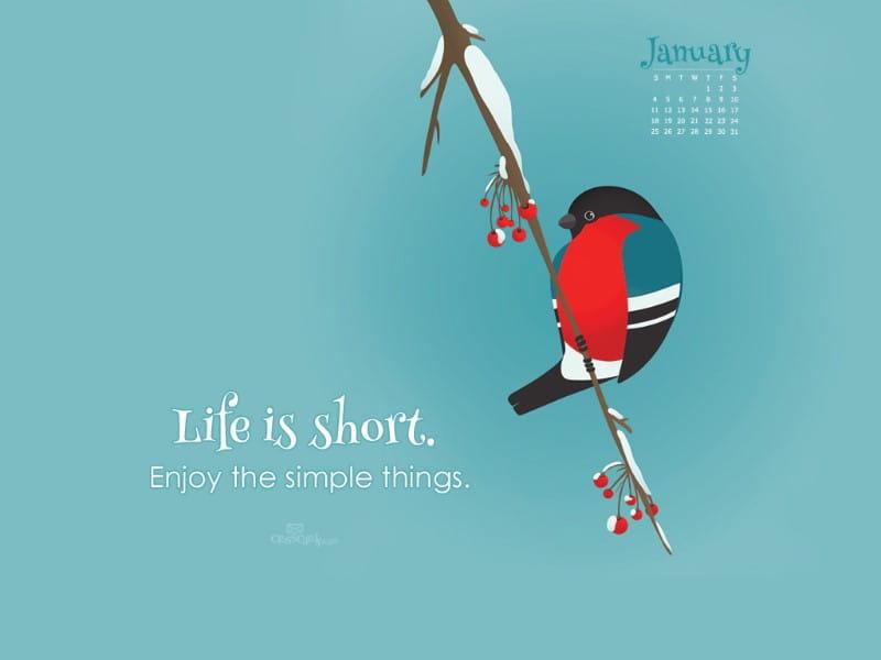 January 2015 - Life is Short mobile phone wallpaper