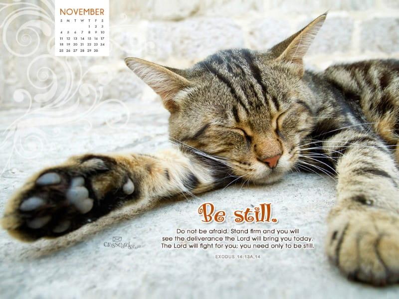 Nov 2012 - Be Still mobile phone wallpaper