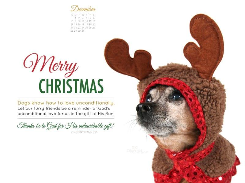 December 2014 - Christmas Dog mobile phone wallpaper