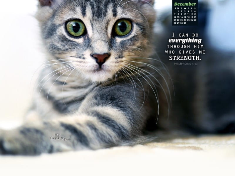 December 2014 - Philippians 4:13 mobile phone wallpaper