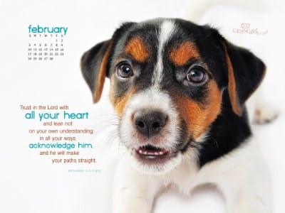Feb 2013 - Proverbs 3:5-6 NIV mobile phone wallpaper