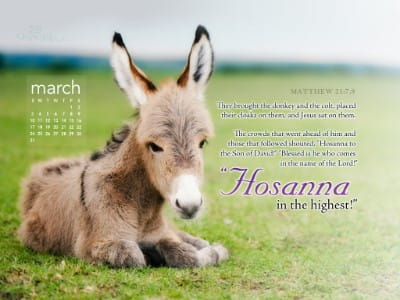March 2013 - Hosanna mobile phone wallpaper