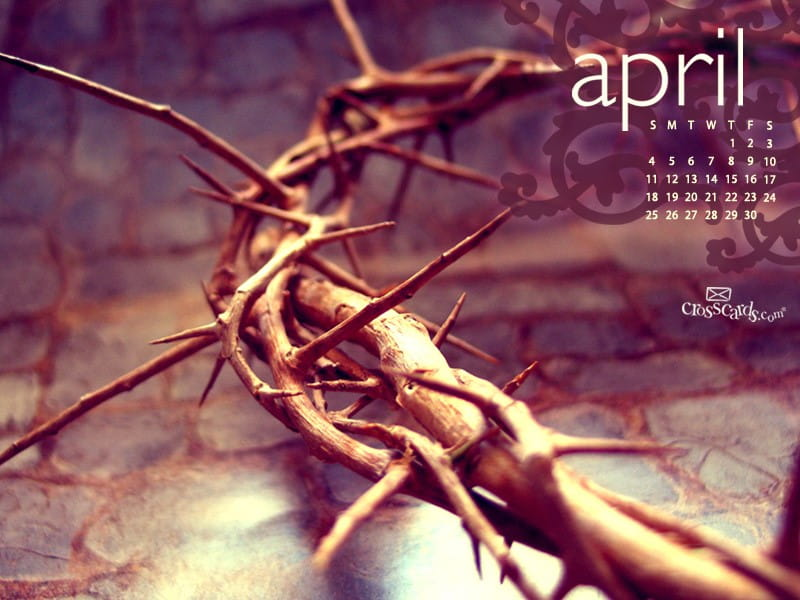 April 2010 - Crown of Thorns mobile phone wallpaper