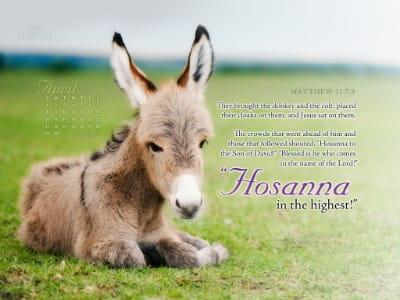 April 2012 - Hosanna mobile phone wallpaper