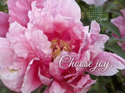 April 2014 - Choose Joy mobile phone wallpaper