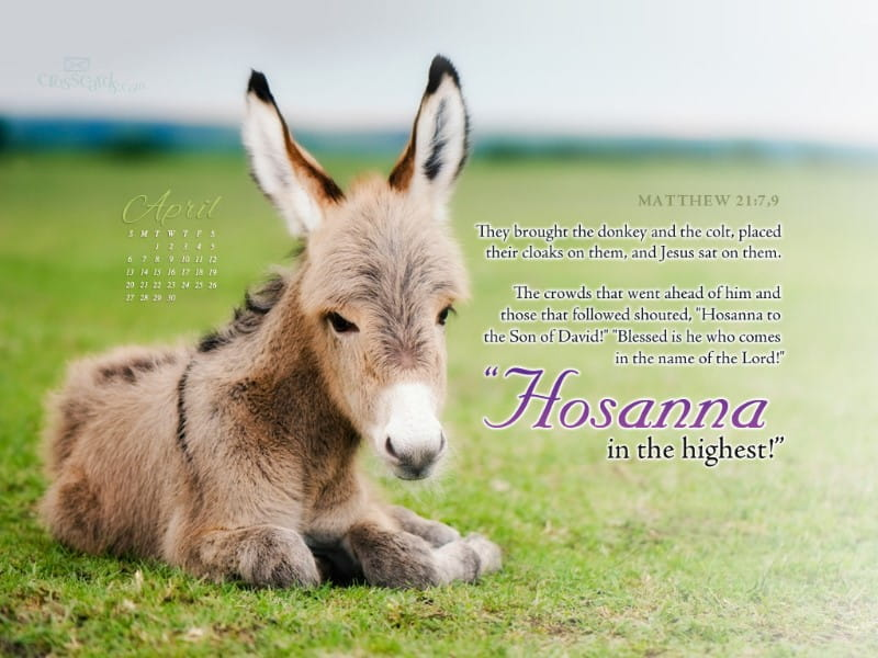 April 2014 - Hosanna mobile phone wallpaper