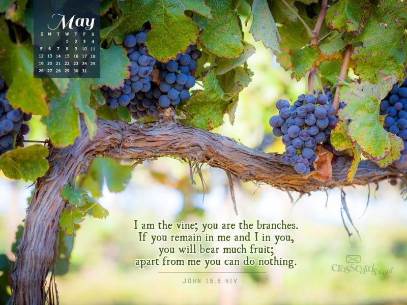 May 2013 John 15 5 Niv Desktop Calendar Free May Wallpaper