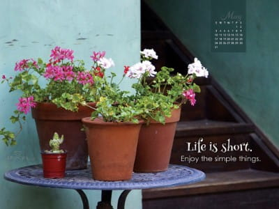 May 2015 - Life is Short mobile phone wallpaper