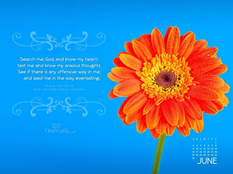 June 2013 - Psalm 139:23-24 NIV mobile phone wallpaper