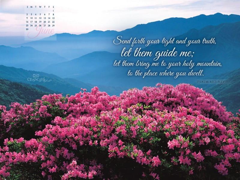 June 2013 - Psalm 43:3 NIV mobile phone wallpaper