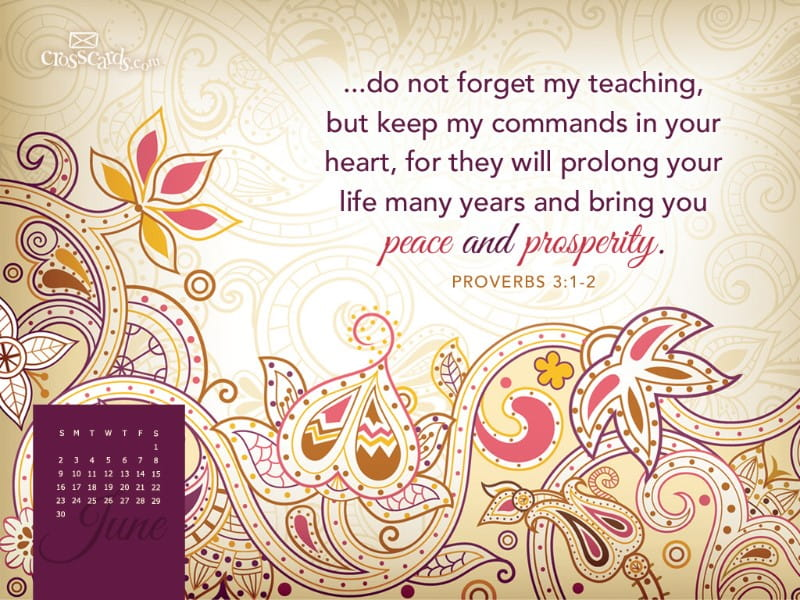 June 2013 - Proverbs 3:1-2 mobile phone wallpaper