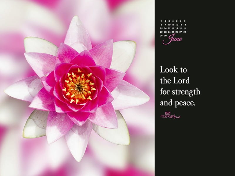 June 2014 - Strength and Peace mobile phone wallpaper