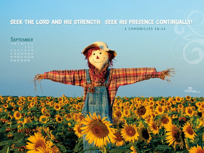 September 2011 - Scarecrow mobile phone wallpaper