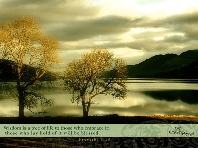 Proverbs 3 18 wallpaper free nature desktop backgrounds - Crosscards christian wallpaper ...