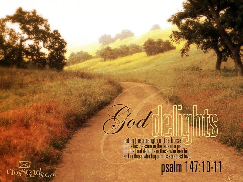 God Delights mobile phone wallpaper
