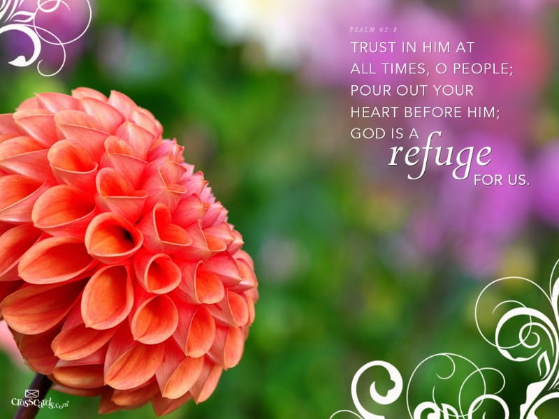 Refuge mobile phone wallpaper
