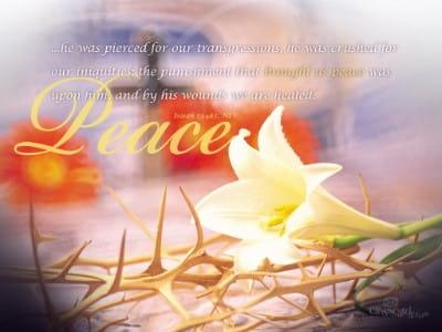 Isaiah 53:4-5 mobile phone wallpaper