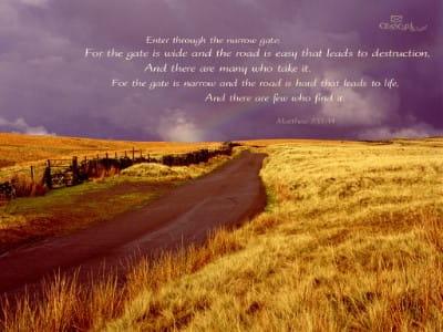 Matthew 7:13-14 mobile phone wallpaper