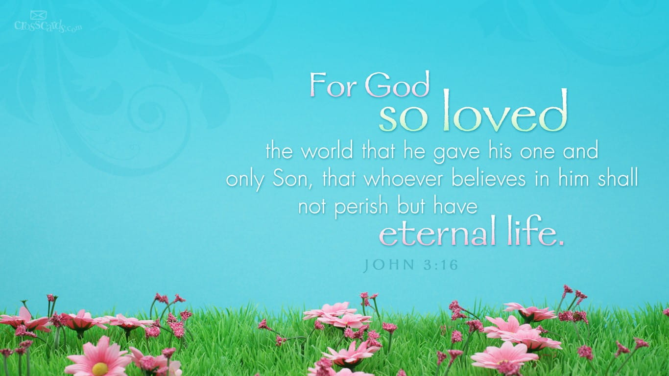 John 316 bible verses and scripture wallpaper for phone or computer select a size voltagebd Choice Image