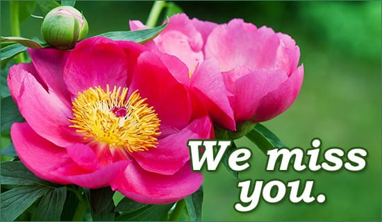 We Miss You ecard, online card