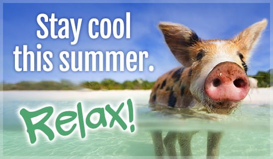 Stay Cool - Relax ecard, online card