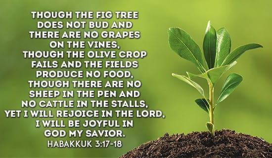 Habakkuk 3:17-18 ecard, online card